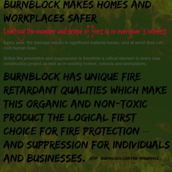 2014_May17 800X800 burnblock fire insurance info
