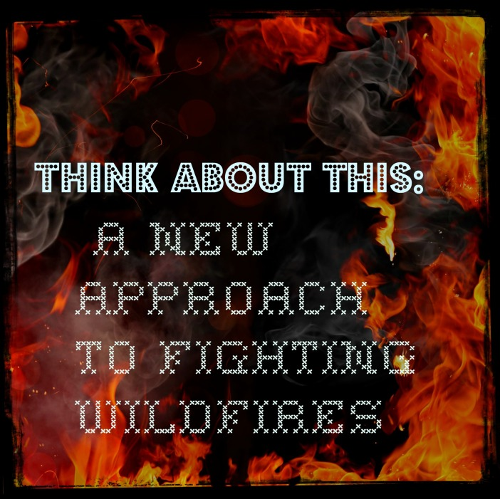 2014_May17 ThinkAboutThis a new approachto fighting wildfires